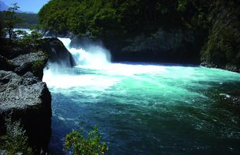 Derechos de aguas, su problemática y distribución en la VIII región