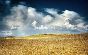 Dry-fields