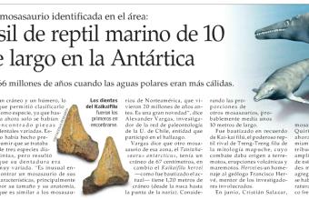 Hallan fósil de reptil marino de 10 metros de largo en la Antártica
