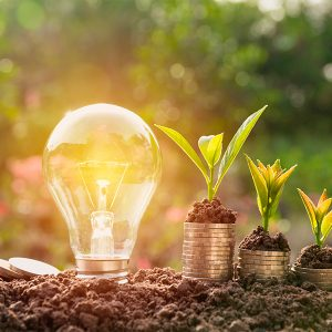 Diplomado en Innovación Orientada a la Sustentabilidad