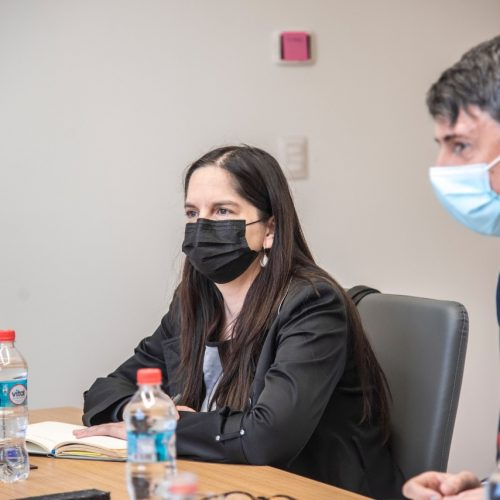 Dra. Loreto Bravo forma parte del Comité Asesor Ministerial de Datos de Interés Público